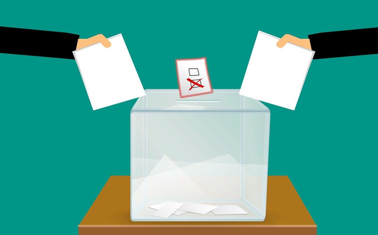 Referendum Costituzionale 29 marzo 2020: manifesto convocazione comizi